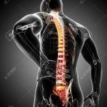 Точечная диагностика суставов, органов