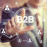 Менеджер по маркетингу b2b