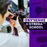 Обучение парикмахерскому искусству в STRIGA School