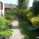 Профессиональная обрезка сада и уходные работы