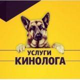 Дрессировка собак с содержанием и без