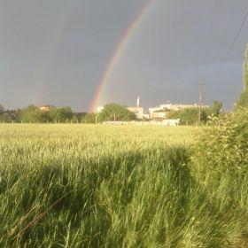 Срочно! земельный участок в краснодарском крае !